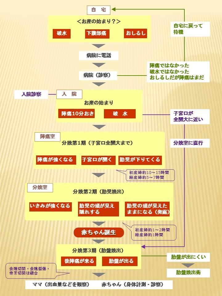 出産シュミレーションマップ